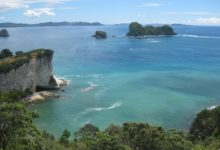My First Solo Trip To The Coromandel