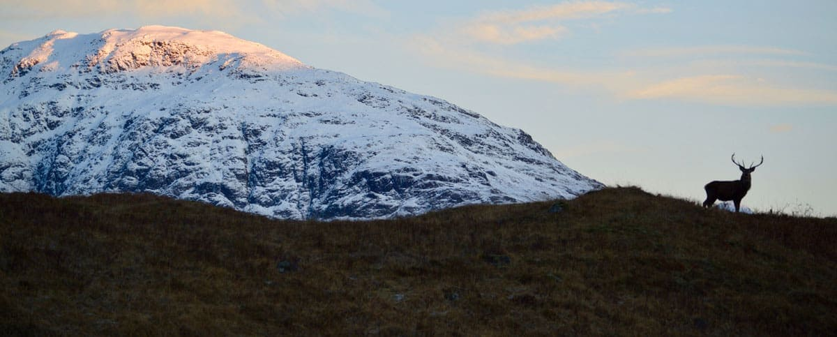 Why I'm Hiking the Length of Scotland