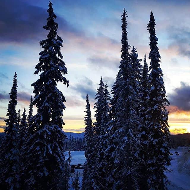 Sunset in the trees at Big White Ski Resort, Kelowna, British Columbia