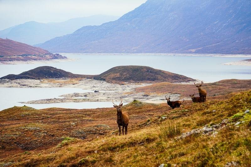 10 day scotland road trip